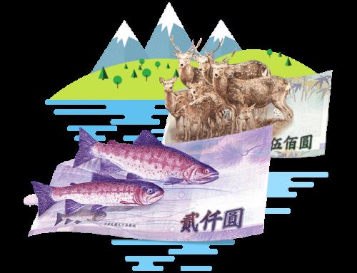 台灣貨幣小百科